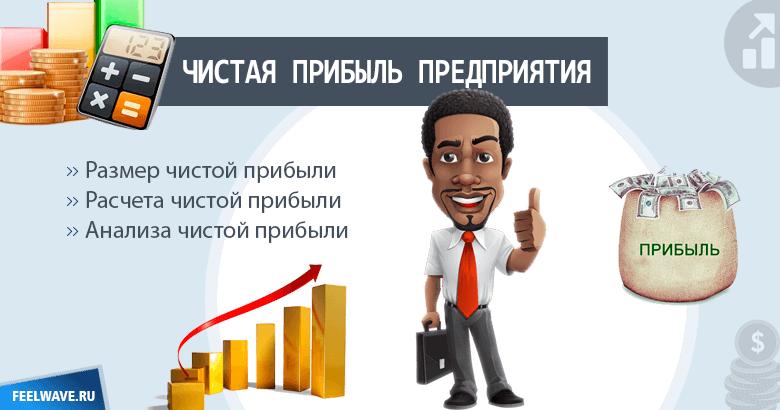 Понятие чистой прибыли, ее расчет и анализ