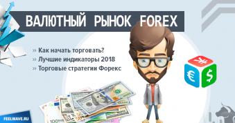 Валютный рынок (биржа) Forex - как начать торговать и зарабатывать на Форексе с нуля